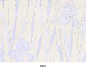 Iris 2 802243